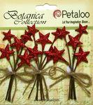 Red Glitter Star Pick - Petaloo