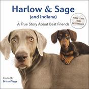 Harlow & Sage - Random House Books