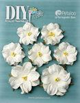 Mini White Rose Paintables - Petaloo