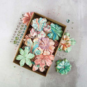 Melange Boxed Flower Set - Prima