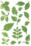 Foliage Stick Ems - Queen & Co