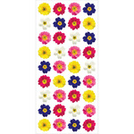 """Primroses - Paper House Puffy Stickers 3""""X6.35"""""""