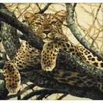 "23.5""X23.5"" 10 Count - Leopard Counted Cross Stitch Kit"