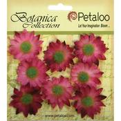 "Fuchsia Pink - Botanica Mini Gerbera Daisies 1.25"" 8/Pkg"