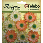"Peach - Botanica Mini Gerbera Daisies 1.25"" 8/Pkg"