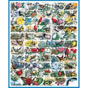 "State Birds & Flowers - Jigsaw Puzzle 1000 Pieces 24""X30"""