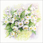 """11.75""""X11.75"""" 14 Count - Watercolour Jasmine Counted Cross Stitch Kit"""