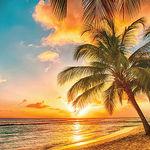 Beach Sunset Paper - Just Beachy - Ella & Viv