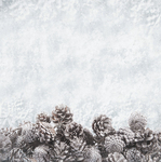 Glacial Paper - Frosted - KaiserCraft