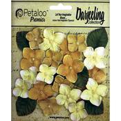 """Yellow - Darjeeling Hydrangeas 1"""" - 1.5"""" 24/Pkg"""