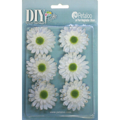 "White - DIY Paintables Gerbera Daisies 2"" 6/Pkg"