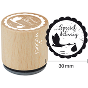 """Special Delivery - Woodies Mounted Rubber Stamp 1.35"""""""
