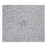 Diamond Sheet - Sweet Peppermint - Prima