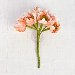 Peach Flower Bundles - Prima