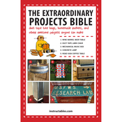 The Extraordinary Projects Bible - Skyhorse Publishing