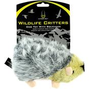 Hedgehog - Hyper Pet Wildlife Critter