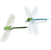 "Blue & Green - Dragonfly W/Wire 2.25"" 1/Pkg"