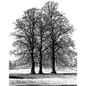 "Tree Trio - Crafty Individuals Unmounted Rubber Stamp 4.75""X7"" Pkg"