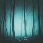 Eerie Night Paper - Eerie Night - Reminice