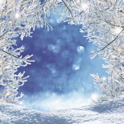 Magical Winter Paper - Magical Too - Reminisce