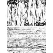 Birch & Pine Stamps - Tim Holtz