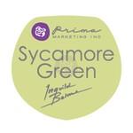 Sycamore Green Chalk Edger - Prima