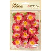 "Red - Textured Elements Briar Rose Canvas 2"" 12/Pkg"