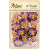"Purple - Textured Elements Briar Rose Canvas 2"" 12/Pkg"