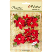 Red - Botanica Regal Gold Poinsettia 12/Pkg