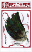 Natural - Strung Coque Feathers