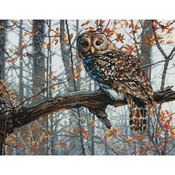 """14""""X11"""" 14 Count - Wise Owl Counted Cross Stitch Kit"""