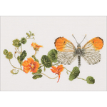"""11.5""""X7"""" 18 Count - Butterfly & Nasturtium On Aida Counted Cross Stitch Kit"""