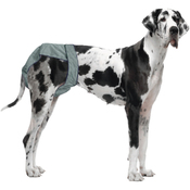 90 To 120lbs - PoochPants Reusable Dog Diaper-XX-Large