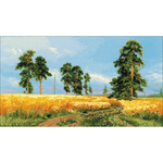 "21.75""X11.75"" 14 Count - A Rye Field Counted Cross Stitch Kit"