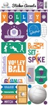 Volleyball Sticker Sheet - Echo Park