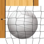 Volleyball Paper - Volleyball - Echo Park