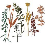 Wildflowers #2 - Sizzix Thinlits Dies By Tim Holtz 7/Pkg