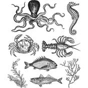 """Sea Life Tim Holtz Cling Stamps 7""""X8.5"""""""