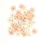 Raelyn - Prima Marketing Tiny Flowers 36/Pkg