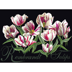 """19.5""""X14"""" 18 Count - Rembrandt Tulips On Aida Counted Cross Stitch Kit"""