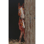 """6""""X10"""" 18 Count - Horse And Foal On Aida Counted Cross Stitch Kit"""