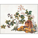 """18.75""""X23.5"""" 16 Count - Squirrel On Aida Counted Cross Stitch Kit"""