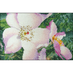 """6.75""""X4.75"""" 18 Count - Rose New Face On Aida Counted Cross Stitch Kit"""