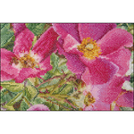 """6.75""""X4.75"""" 18 Count - Rosa Moyessi On Aida Counted Cross Stitch Kit"""