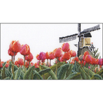 "9.5""X5.5"" 18 Count - Bulbfield Tulips On Aida Counted Cross Stitch Kit"