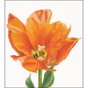 "13.25""X14"" 16 Count - Orange Triumph Tulip On Aida Counted Cross Stitch Kit"