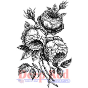 """English Rose - Deep Red Cling Stamp 2""""X3.2"""""""