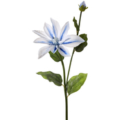 White/Blue - Dynasty Clematis + Bud 27""