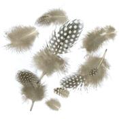 Natural - Guinea Plumage Feathers .04oz