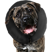 Extra Extra Large - ZenPet Inflatable Recovery Collar